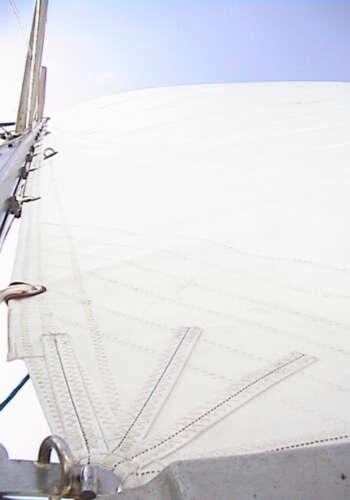 MainSails-DL-Sails-38